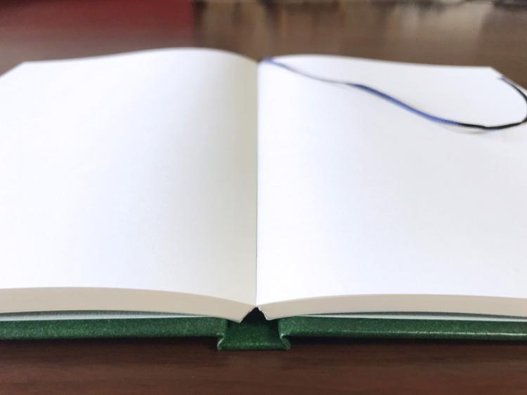 ナカプリバイン プレミアム A5判 無地 200頁 水平開き(ナカプリバイン)の見開き